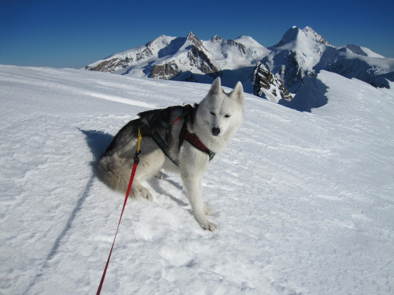 Saskia est montée à 4159m d'altitude! 2611