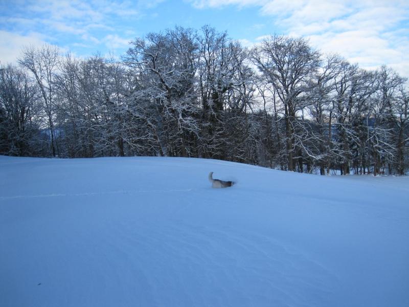Nouvelles courses de Saskia dans la neige 2618