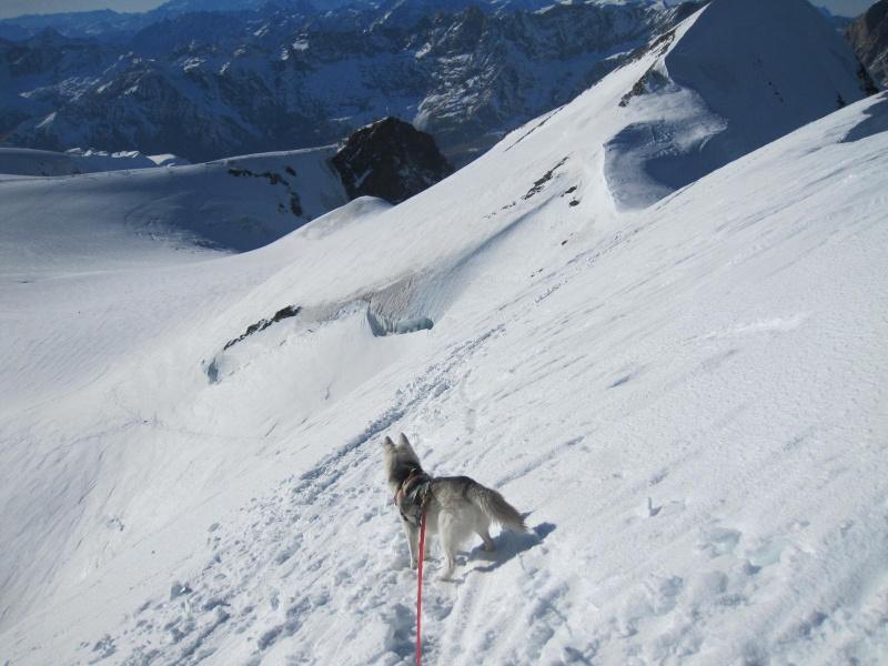 Saskia est montée à 4159m d'altitude! 2711