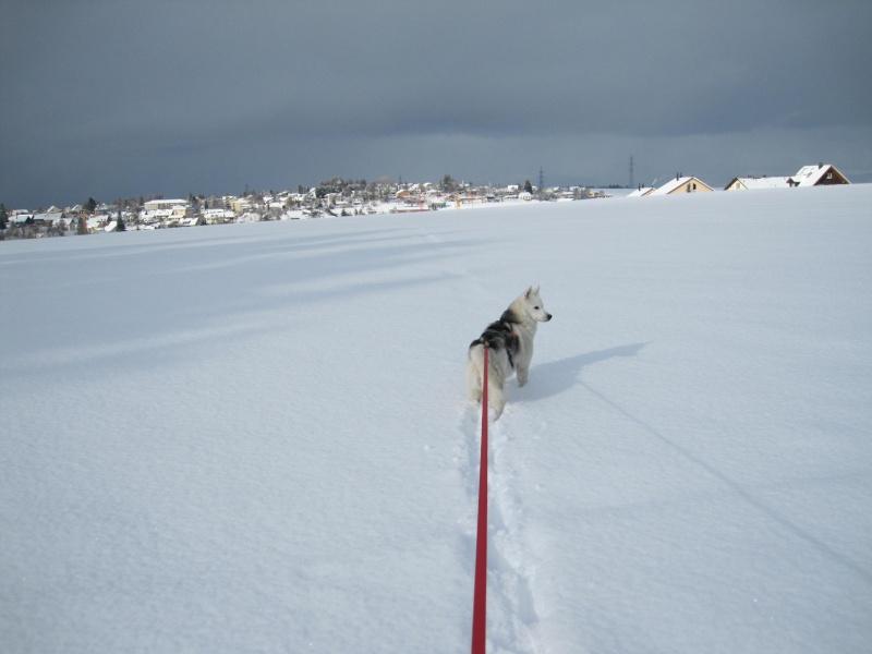 Nouvelles courses de Saskia dans la neige 2715