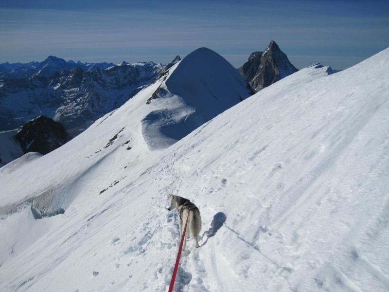 Saskia est montée à 4159m d'altitude! 2811