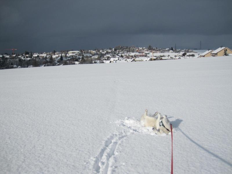 Nouvelles courses de Saskia dans la neige 2815