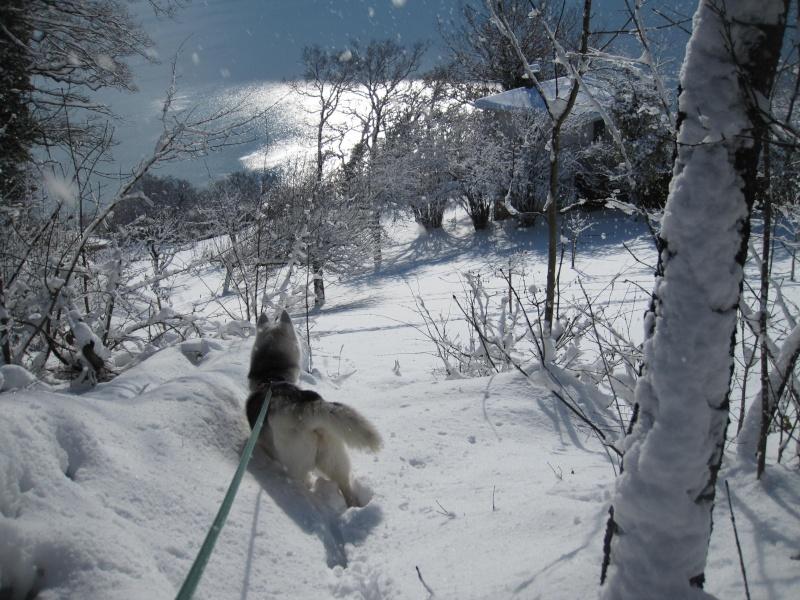 Nouvelles courses de Saskia dans la neige 2816
