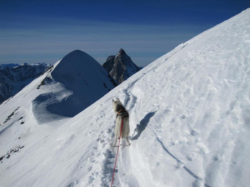 Saskia est montée à 4159m d'altitude! 2912