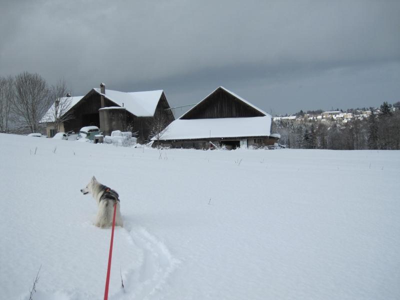 Nouvelles courses de Saskia dans la neige 3113