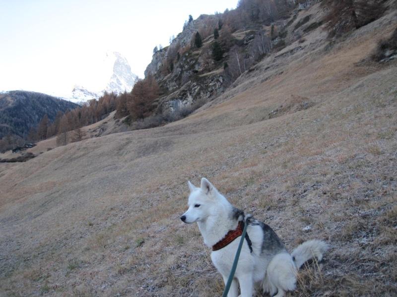 Saskia est montée à 4159m d'altitude! 312