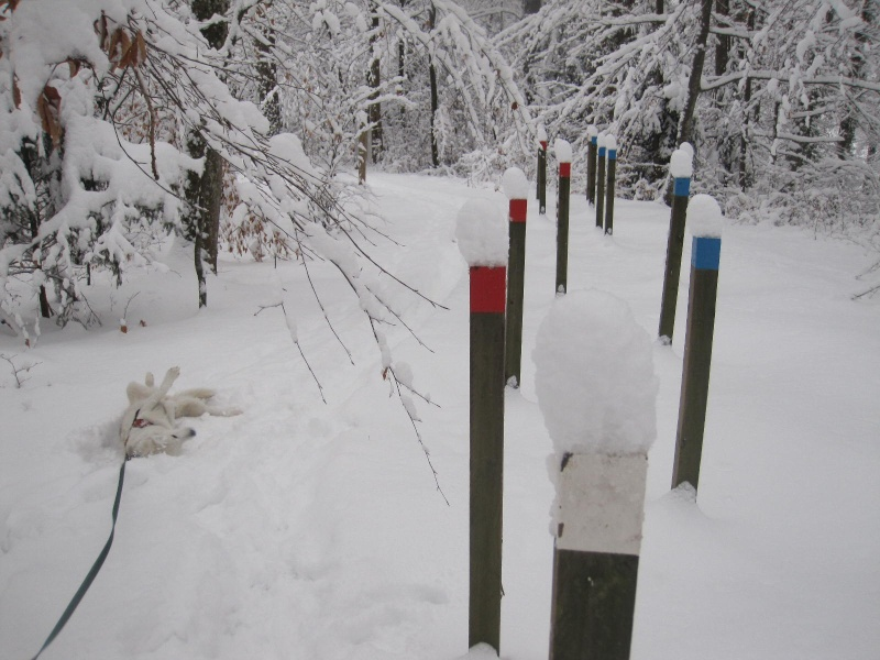 Saskia dans la neige en décembre 2011 320