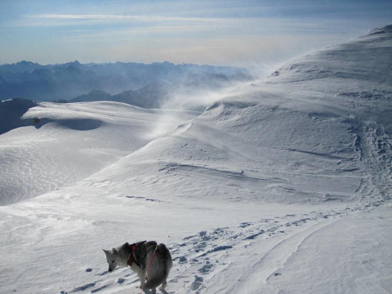 Saskia est montée à 4159m d'altitude! 3212