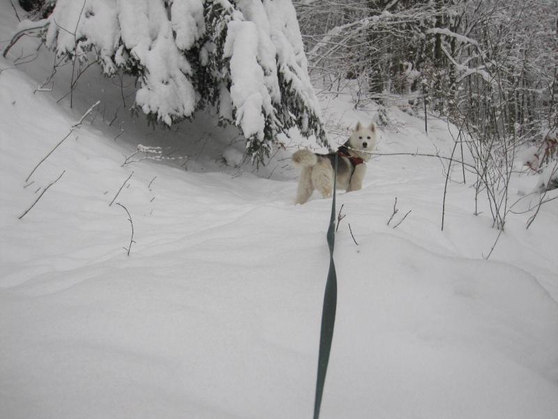 Saskia dans la neige en décembre 2011 322