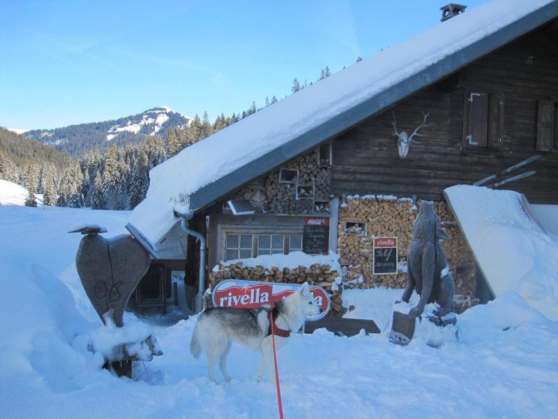 Saskia dans la neige à Morgins 329
