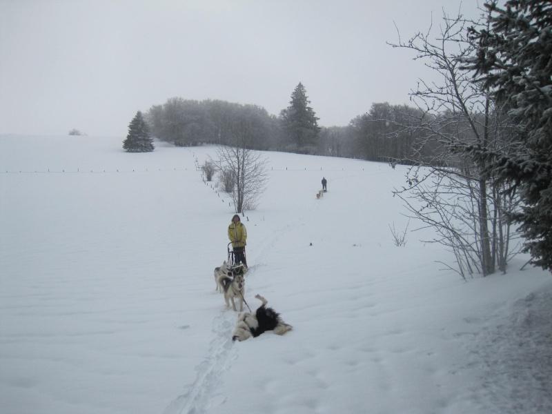 Deux attelages sur une neige portante 334