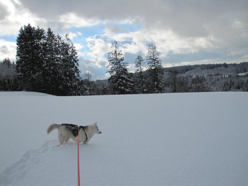 Nouvelles courses de Saskia dans la neige 3415