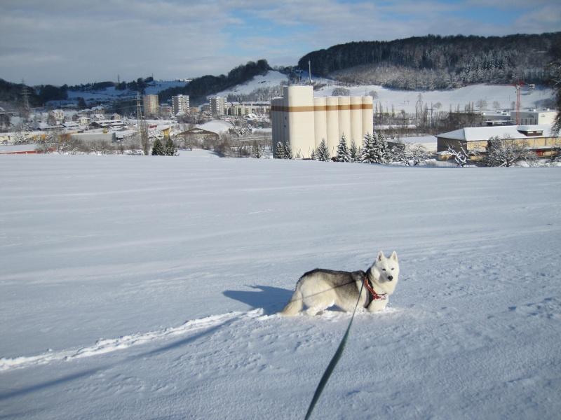 Nouvelles courses de Saskia dans la neige 3416