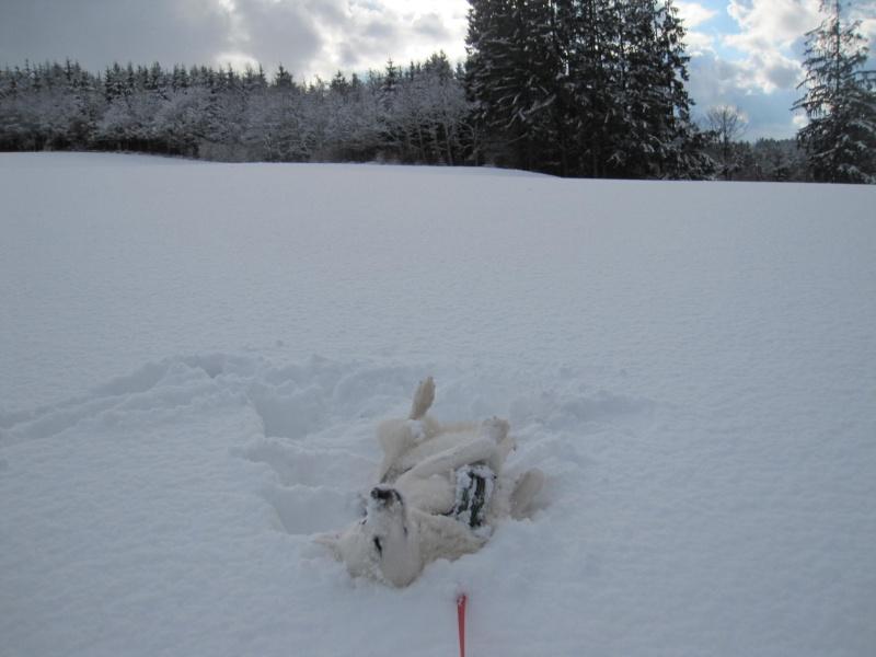 Nouvelles courses de Saskia dans la neige 3513