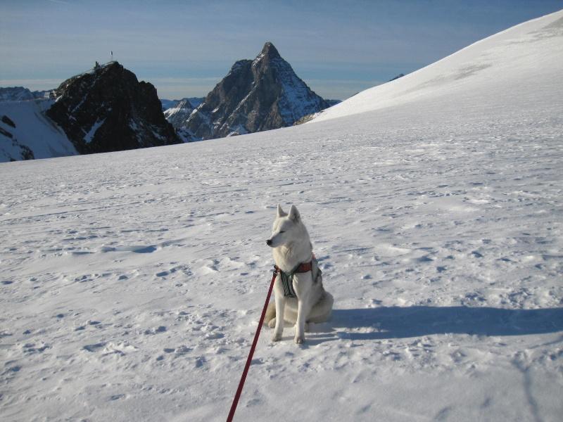 Saskia est montée à 4159m d'altitude! 3610