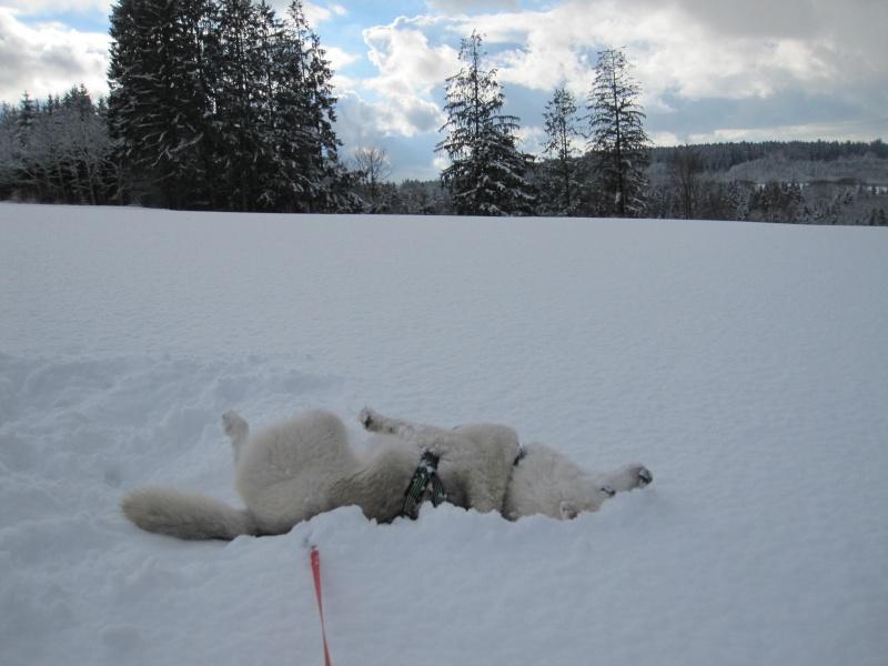 Nouvelles courses de Saskia dans la neige 3613