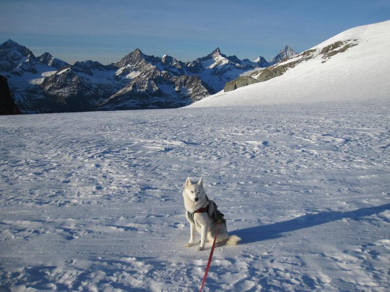 Saskia est montée à 4159m d'altitude! 3710