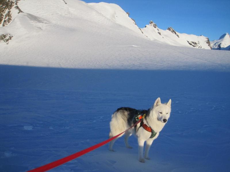 Saskia est montée à 4159m d'altitude! 3811