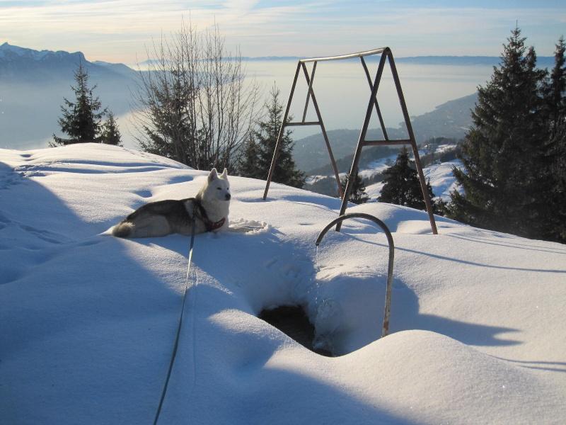 Saskia dans la neige en décembre 2011 423