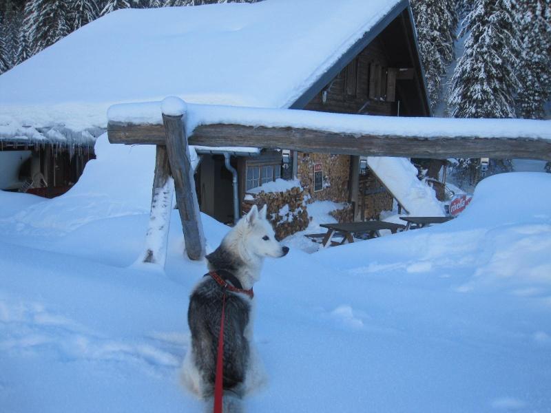 Saskia dans la neige à Morgins 426