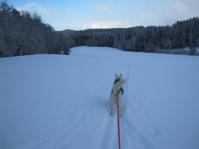 Nouvelles courses de Saskia dans la neige 4315
