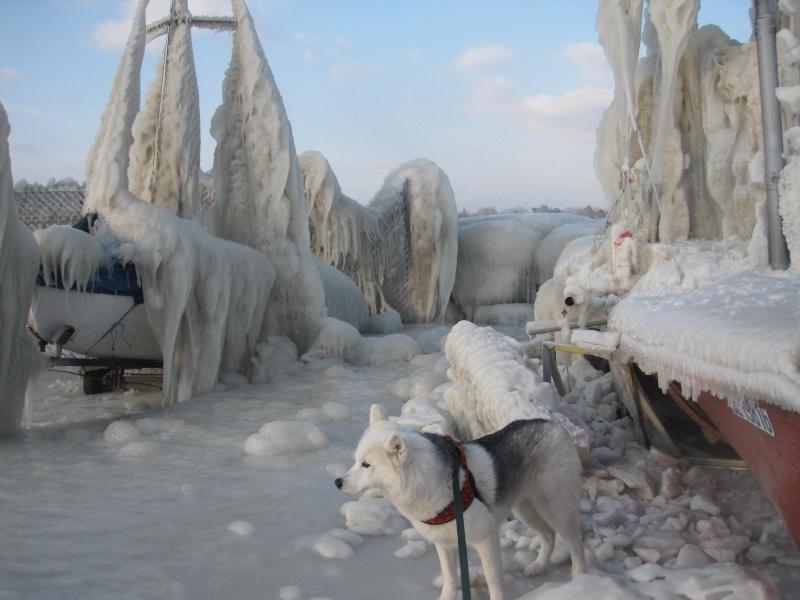 Tempête glacée au bord du lac Léman 434