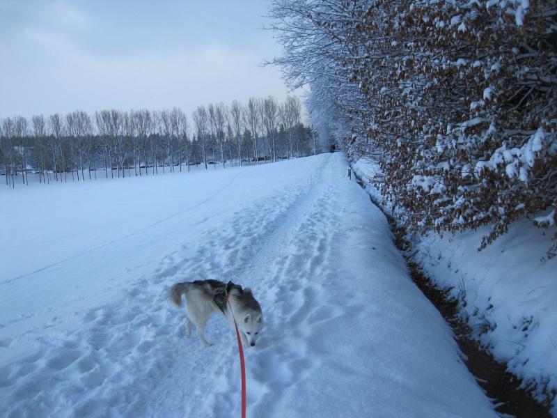 Nouvelles courses de Saskia dans la neige 4413
