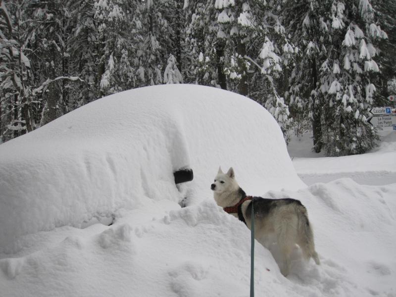Nouvelles courses de Saskia dans la neige 443