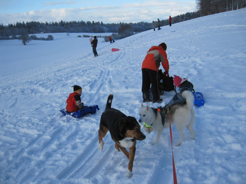 Nouvelles courses de Saskia dans la neige 4513