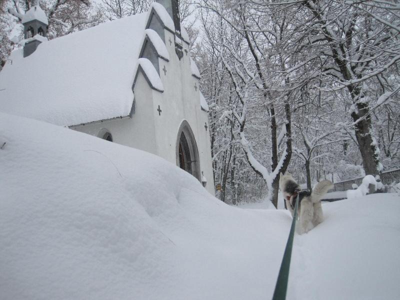 Saskia dans la neige en décembre 2011 520