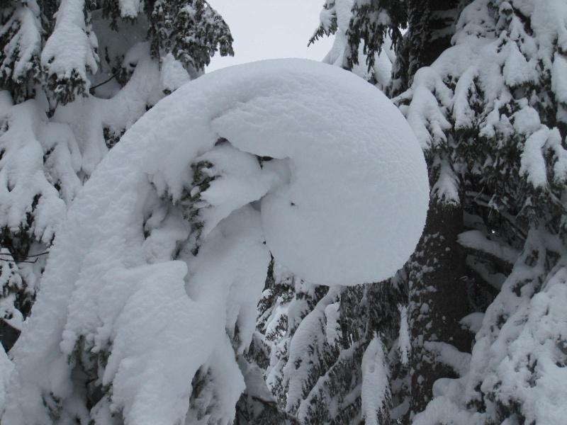 Saskia dans la neige en décembre 2011 521