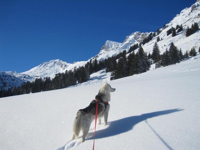Saskia dans la neige à Morgins 626