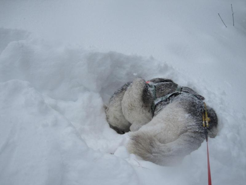 Nouvelles courses de Saskia dans la neige 639