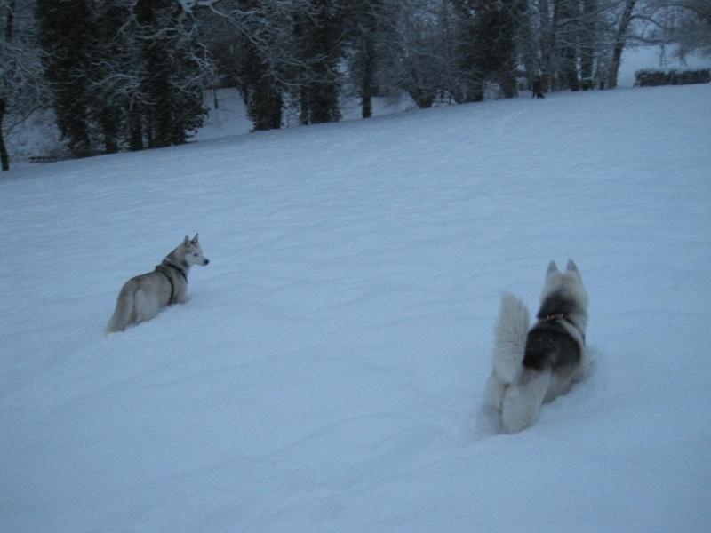 Nouvelles courses de Saskia dans la neige 641