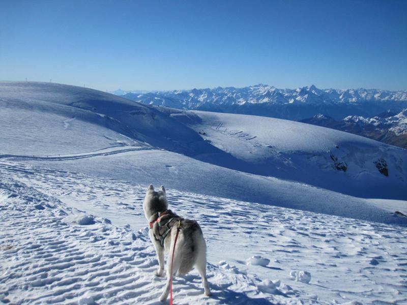 Saskia est montée à 4159m d'altitude! 711