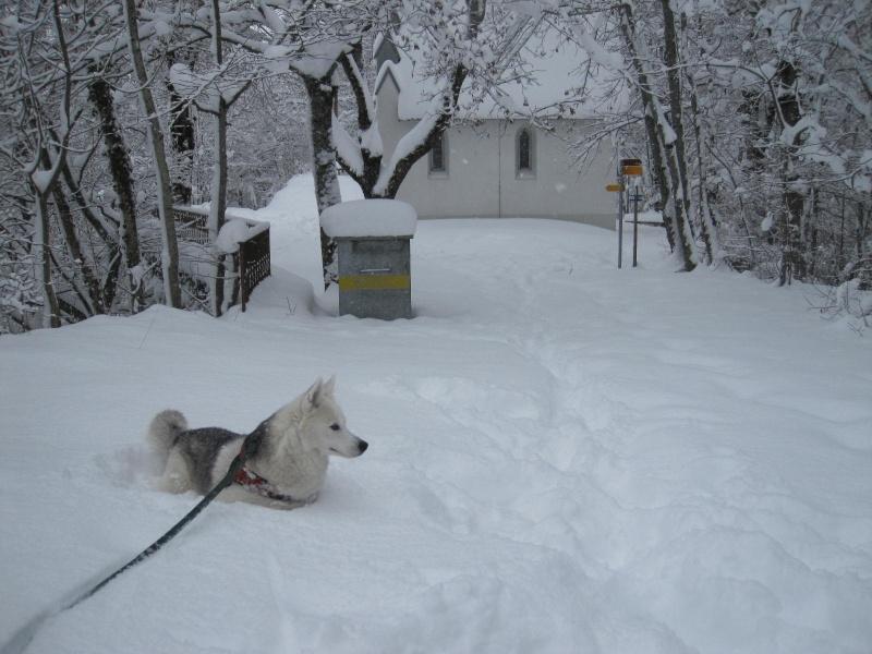 Saskia dans la neige en décembre 2011 717
