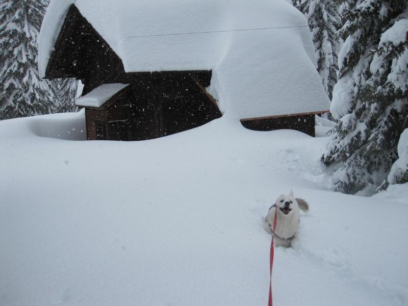 Saskia dans la neige en décembre 2011 818