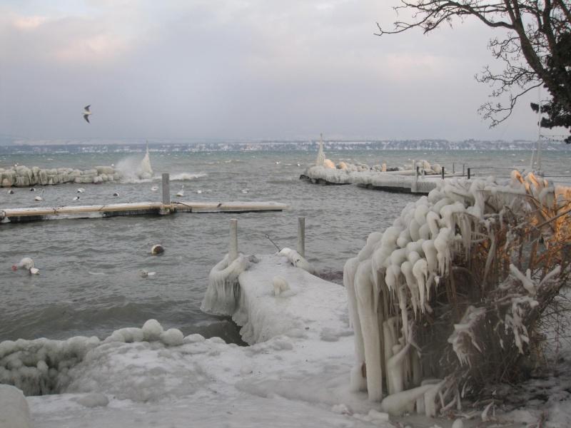 Tempête glacée au bord du lac Léman 831