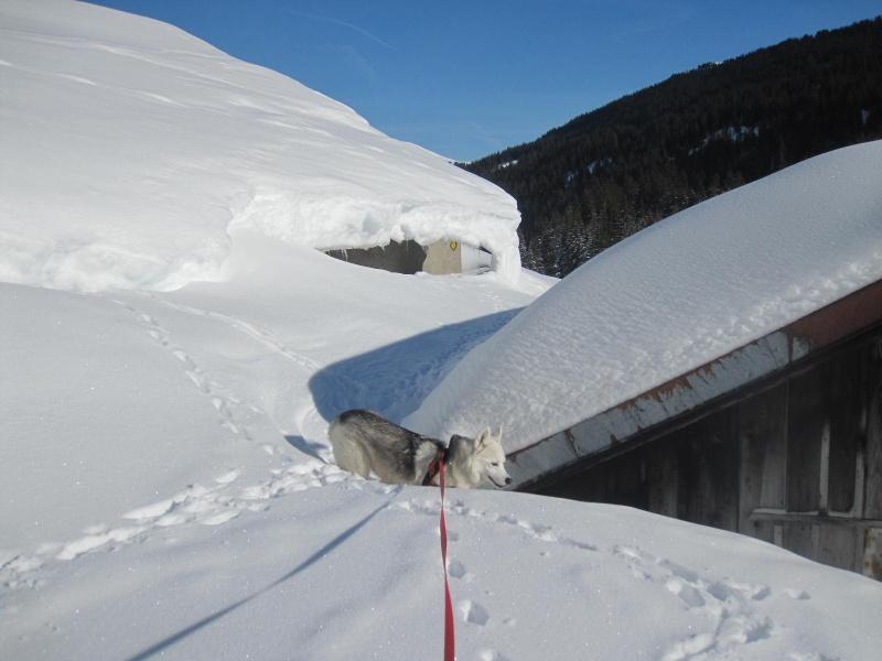 Saskia dans la neige à Morgins 923