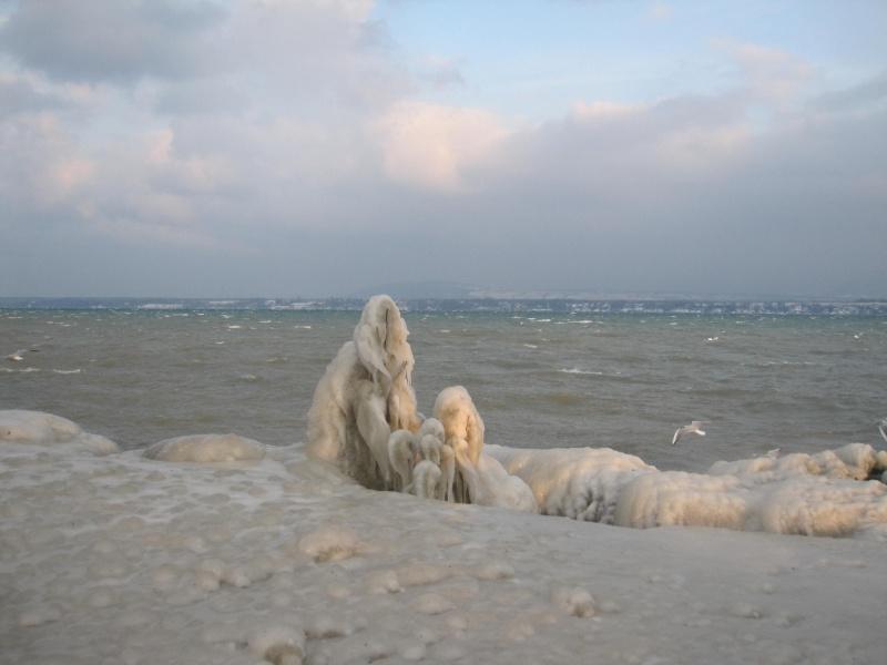 Tempête glacée au bord du lac Léman 931