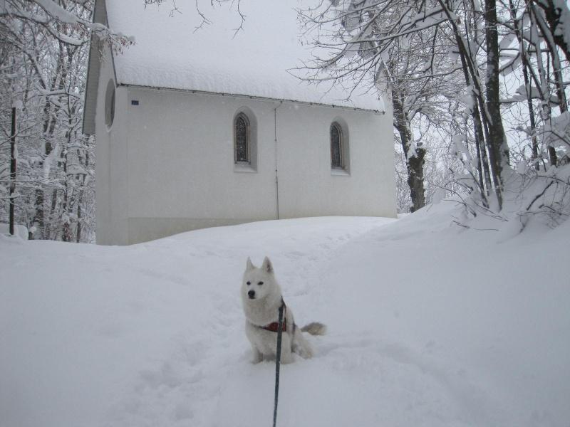 Saskia dans la neige en décembre 2011 Img_0910