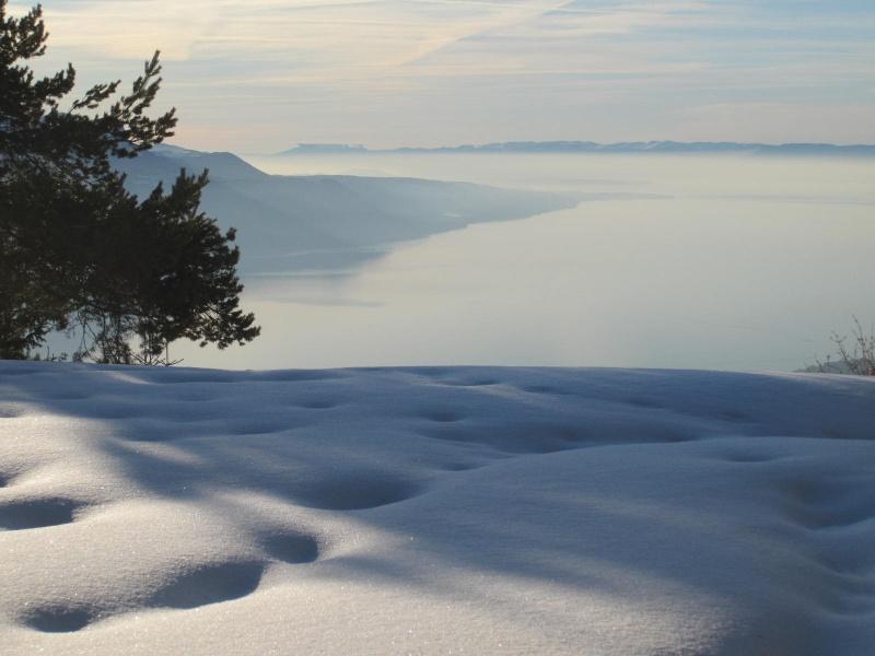 Saskia dans la neige en décembre 2011 - Page 2 Mirage10