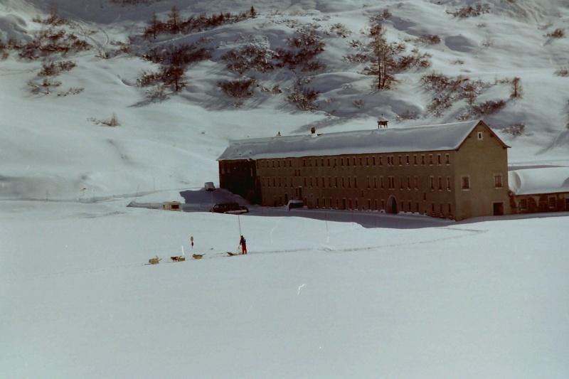 Mes plus beaux souvenirs de traineau à Chiens Pict0012