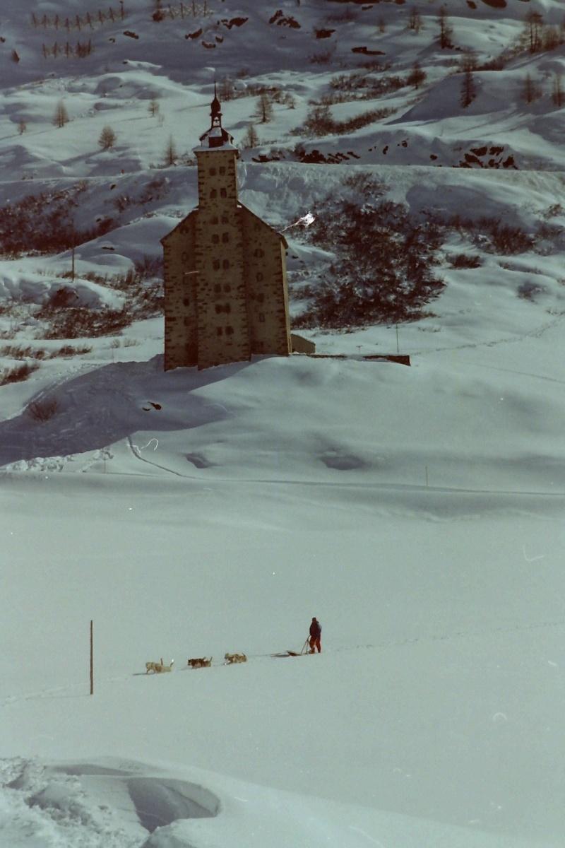 Mes plus beaux souvenirs de traineau à Chiens Pict0014