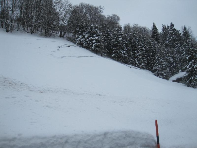 Saskia dans la neige en décembre 2011 Plaque10
