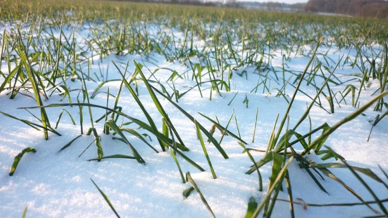 Vague de froid potentiellement marquée et peut-être assez durable - Prévisions, suivi & analyses - - Page 7 03410