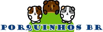 Porquinhos da Índia - Brasil