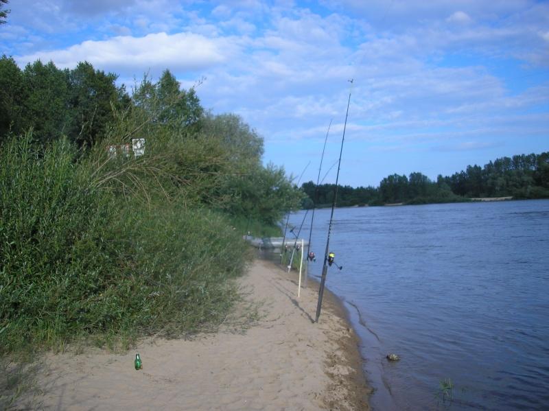 Sortie sur la Loire P7070014