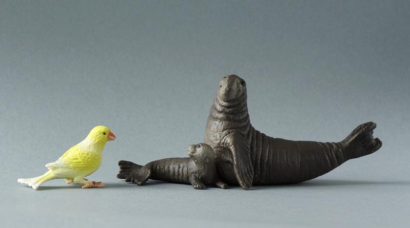 Wonderful gifts from Susanne! - Bullyland Sea elephants and Canary :D Elepha10