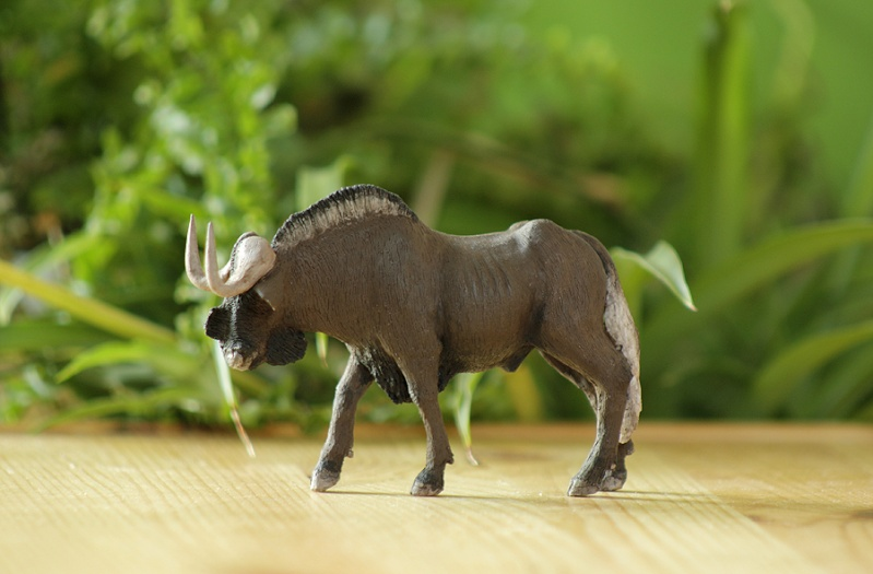 ...and me the black wildebeest from Joan! Gnu210